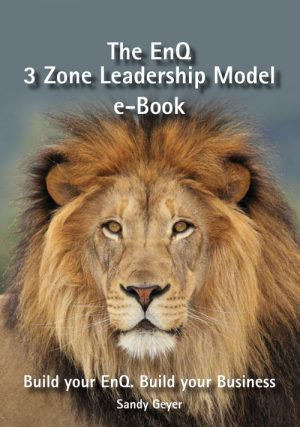 The EnQ 3 Zone Leadership Model